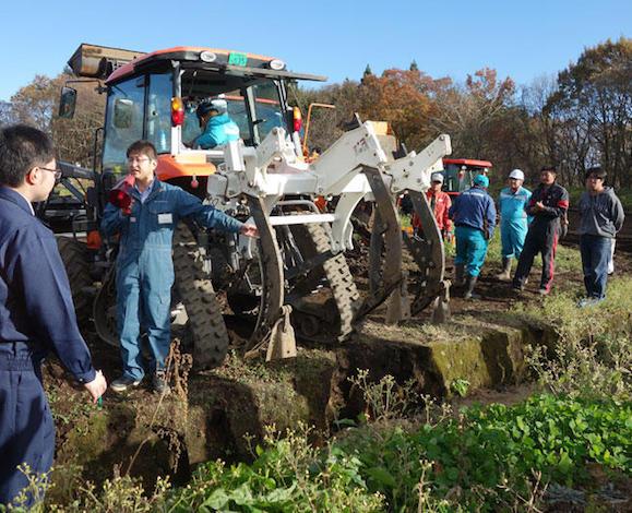 排水対策実証圃場でナガイモ収穫実演会を開催(青森県十和田市)