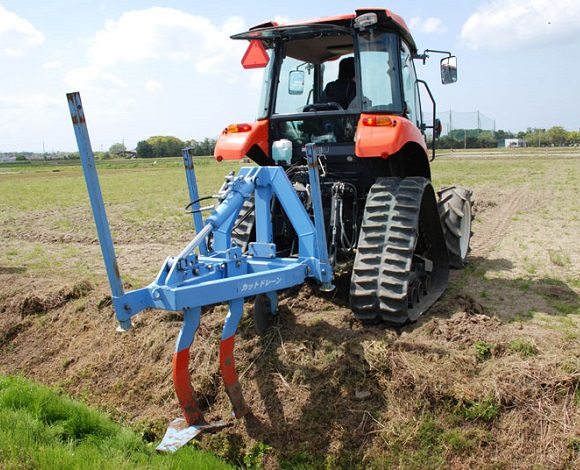 排水対策によるネギの湿害改善を目指した実証調査を実施(三重県伊勢市)