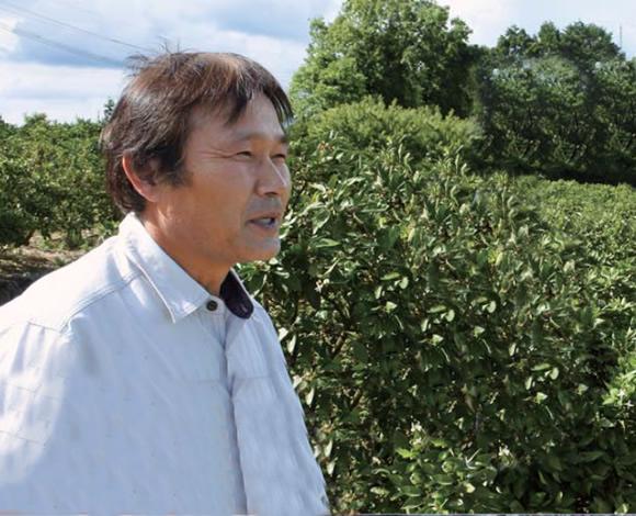 みかん栽培の機械化に取り組む~園地整備とSSの活用~(後編)