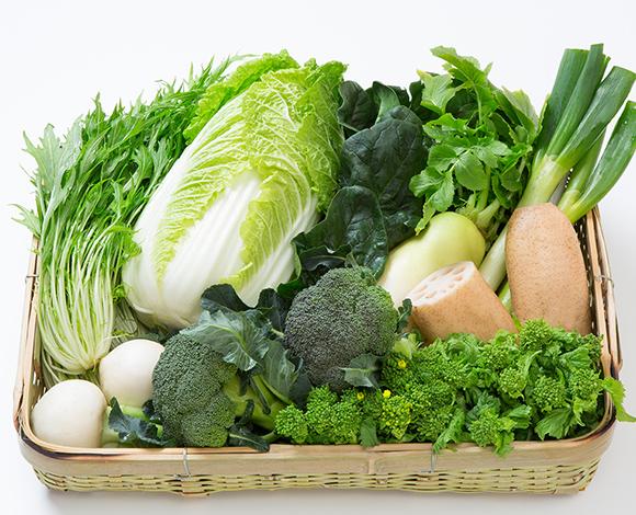 秋冬おすすめ野菜