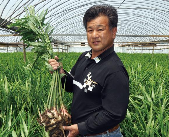 食べ方の提案や商品開発、産地間連携で、「和歌山新しょうが」の消費拡大につなげたい