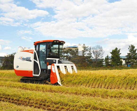 新規需要米制度を活用し、飼料用米で水田農業を活性化!