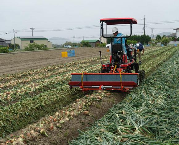 【全国農業システム化研究会】ハイクリトラクタを活用したタマネギの乗用機械収穫体系の実演会を開催(兵庫県南あわじ市)