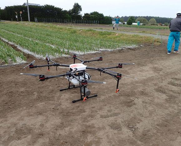 生産量日本一を誇るニンニクでドローンによる農薬散布試験を実施(青森県六戸町)