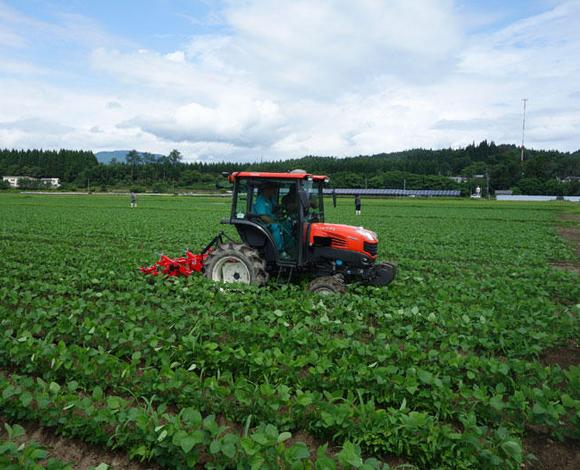 【全国農業システム化研究会】GNSSを活用した大豆の培土作業実演会を開催(秋田県大館市)