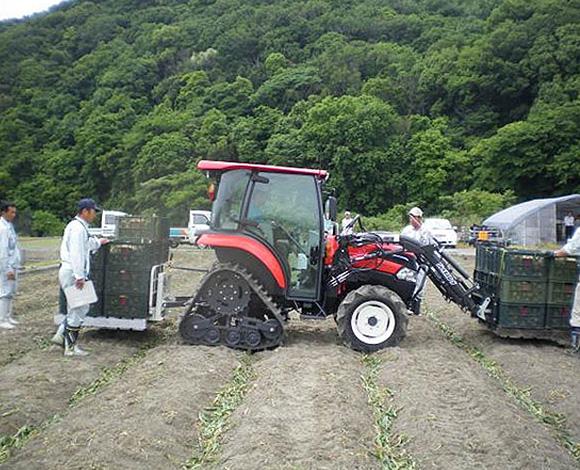 たまねぎ機械化一貫体系の確立-省力・低コスト・安定生産技術に関する実証調査-(兵庫県・平成24年度)