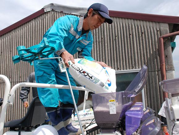 WCS稲における水稲鉄コーティング直播栽培の適応性実証調査(高知県高岡郡)