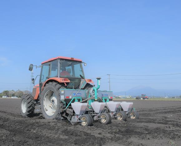 【クボタ ソリューションレポート No.30】飼料の自家生産で自給率アップ! 子実トウモロコシに取り組む大規模養豚牧場