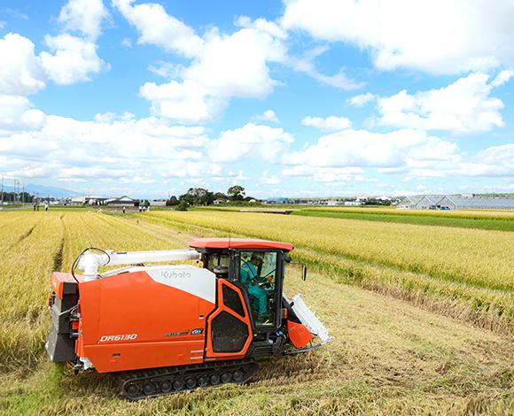 地域で普及できる乾田直播技術確立を目指して 鎮圧効果の実証で漏水田でも乾直が可能に!