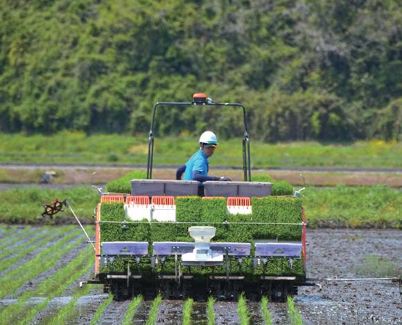 輸出に対応できる『超低コスト米』生産体制の実証